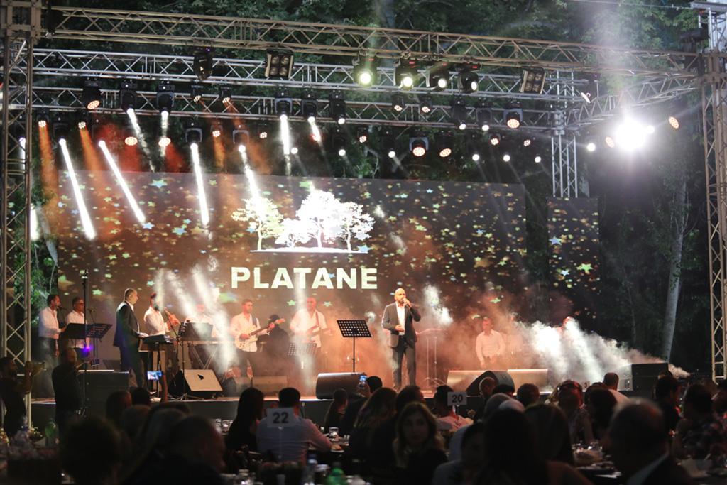 Platane Opening